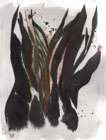 seaweed abstraction